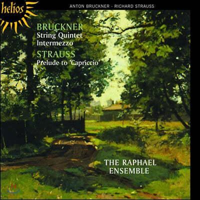 The Raphael Ensemble 브루크너: 현악 5중주 / R.슈트라우스: 카프리치오