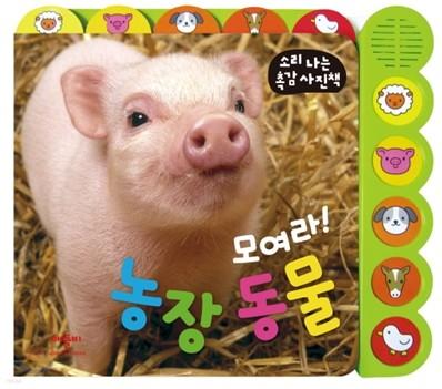 모여라! 농장 동물