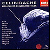 �������� ÿ������� - �� ����� (Sergiu Celibidache First Authorized Edition) (15CD) - Sergiu Celibidache
