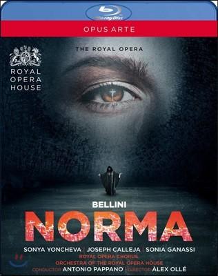 Antonio Pappano / Sonya Yoncheva 벨리니: 노르마 (Bellini: Norma)