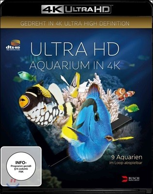 Ultra HD : Aquarium in 4K (뒤스부르크의 수족관의 해양 생물) [4K Blu-Ray]