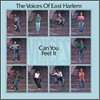 The Voices Of East Harlem - Can You Feel It (LP Miniature)