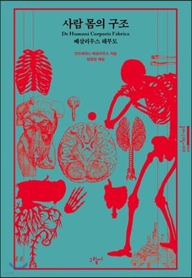 사람 몸의 구조