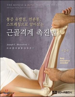 통증유발점, 연관통,스트레칭으로 알아보는 근골격계 촉진법