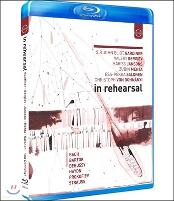 지휘자 6인의 리허설 현장 (In Rehearsal: Gardiner, Gergiev, Jansons, Mehta, Salonen & Dohnanyi)