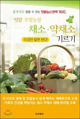 텃밭 주말농장 채소 ·약채소 기르기