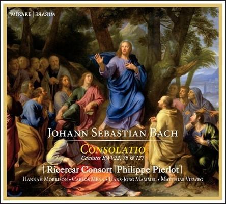 Ricercar Consort / Philippe Pierlot 바흐: 칸타타 - 콘솔라티오 (J.S. Bach: Consolatio - Cantatas BWV22, 75 & 127)