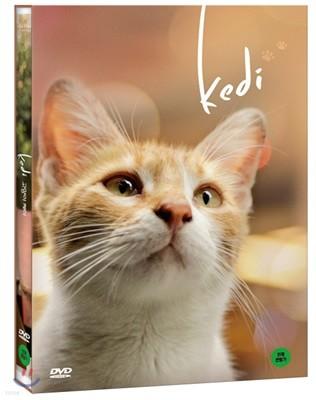 고양이 케디 (1Disc)