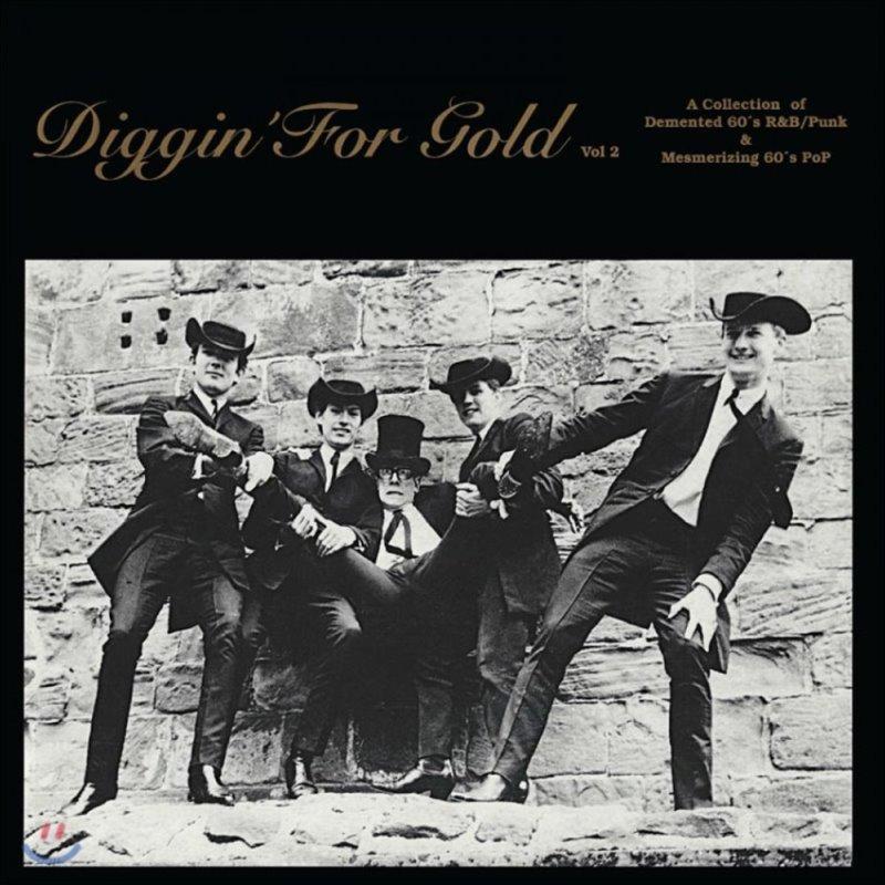 1960년대 리듬 앤 블루스, 펑크, 팝 음악 모음집 (Digging For Gold, Vol. 2) [골드 컬러 LP]