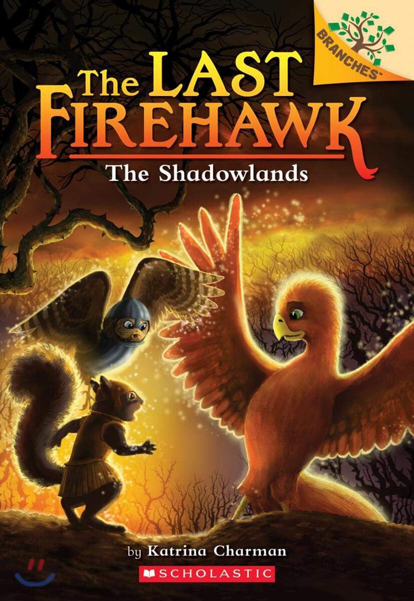 The Last Firehawk #05 : The Shadowlands