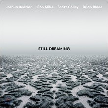 Joshua Redman (조슈아 레드맨) - Still Dreaming (feat. Ron Miles, Scott Colley & Brian Blade)