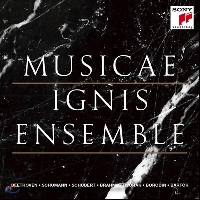 이니스 앙상블 창단 10주년 기념 앨범 (Ignis Ensemble - Musicae)