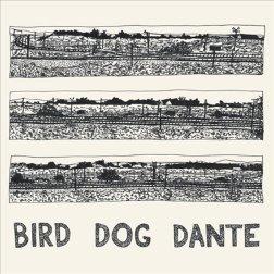 John Parish - Bird Dog Dante (LP)