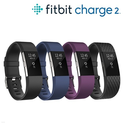Fitbit Charge2 핏비트 차지2 스마트밴드