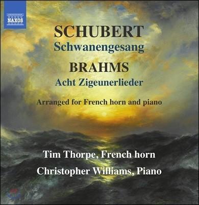 Tim Thorpe 슈베르트: 백조의 노래 / 브람스: 집시의 노래 [프렌치 호른 & 피아노 편곡반] (Schubert: Schwanengesang, D957 / Brahms: Zigeunerlieder, Op. 103)