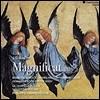 Philippe Herreweghe 바흐: 마니피카트 BWV 243, 칸타타 BWV 80 (Bach: Magnificat, Cantata)