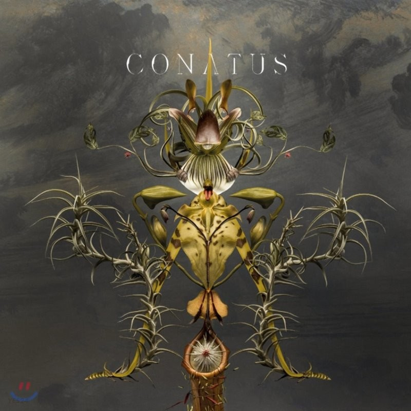 Joep Beving 윱 베빙: 코나투스 (Conatus) [2LP]