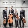 Tesla Quartet 하이든 / 라벨 / 스트라빈스키: 현악 사중주 (Haydn / Ravel / Stravinsky)