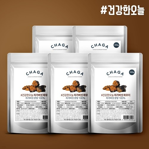 건강한오늘 러시아산 차가버섯 분말 1kg (200g x 5팩)