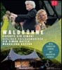 Simon Rattle 2018년 베를린 필 발트뷔네 콘서트 (Waldbuhne 2018 - Goodbye Sir Simon!)