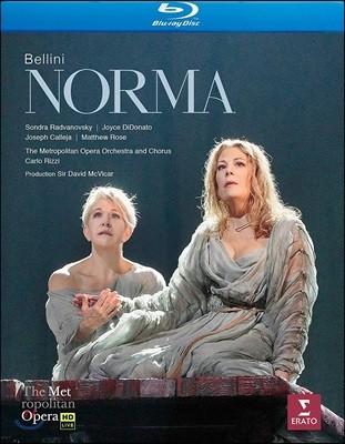 Carlo Rizzi 벨리니: 오페라 '노르마' (Bellini: Norma) 카를로 리치