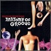 Brazilian Groove Band - Anatomy Of Groove