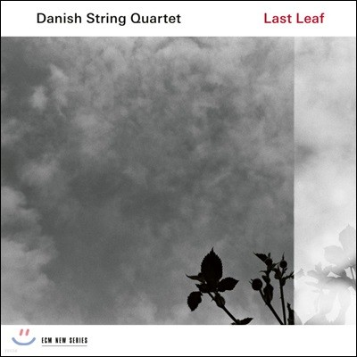 Danish String Quartet 덴마크 민속음악 연주집 - 마지막 잎새 (Last Leaf) [LP]