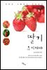 딸기 유기재배