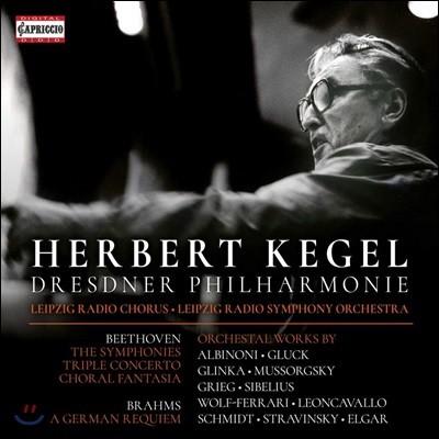 Herbert Kegel 헤르베르트 케겔 - 베토벤: 교향곡 전곡 / 브람스: 독일 레퀴엠