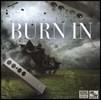 STS Digital 레이블 오디오 버닝용 음반 (Burn In)