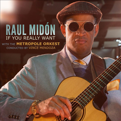 Raul Midon - If You Really Want (with Metropole Orkest, conducted by Vince Mendoza)