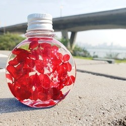 원형 빨강 수국 하바리움 만들기 패키지 DIY