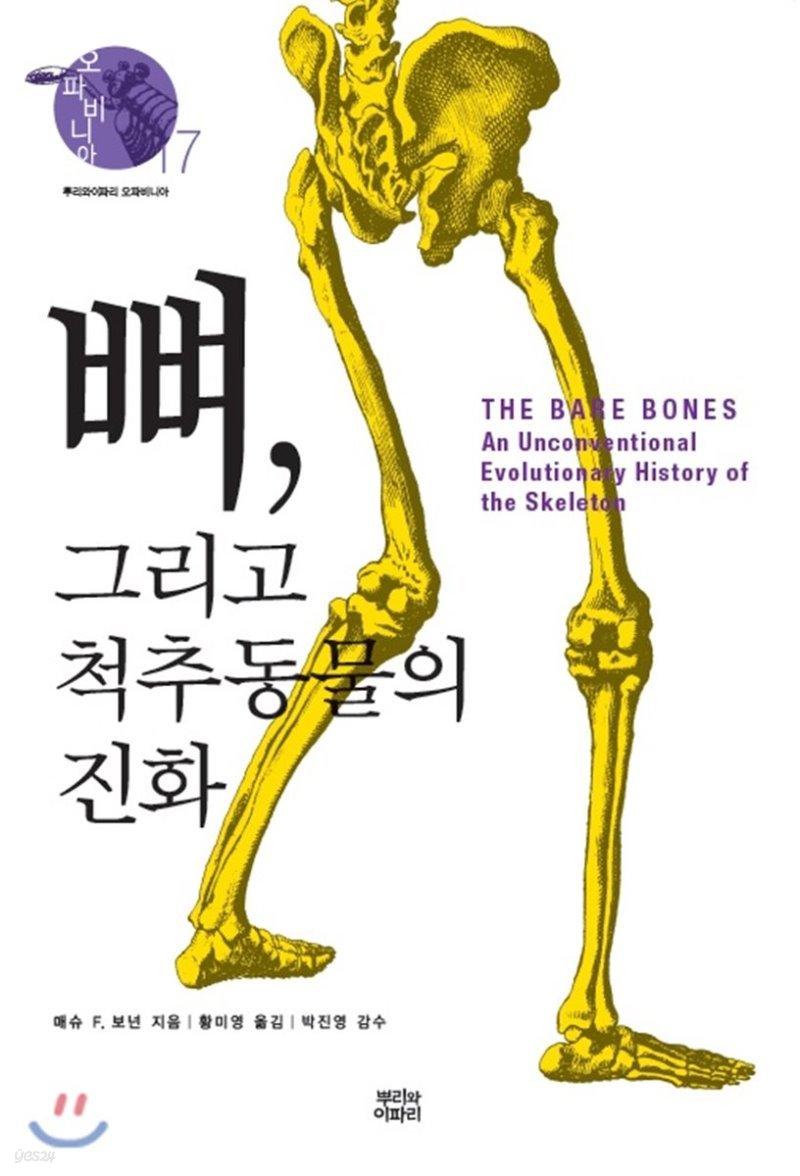 뼈, 그리고 척추동물의 진화