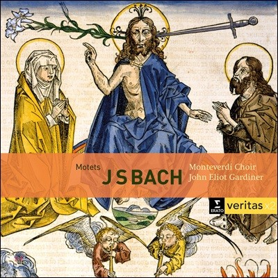 John Eliot Gardiner 바흐: 모테트 BWV 225-231, 칸타타 BWV 50, 118 (Bach: Motets, Cantatas)