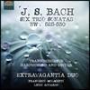 Extravagantia Duo 바흐: 여섯 개의 트리오 소나타 [기타와 하프시코드 연주반]