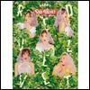 레드벨벳 (Red Velvet) - Sappy (호화 Box+Booklet) (초회한정반)