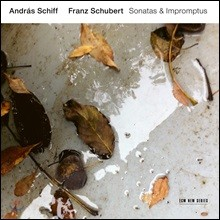 Andras Schiff 슈베르트: 피아노 소나타와 즉흥곡 - 안드라스 쉬프