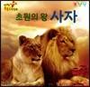 초원의 왕 사자