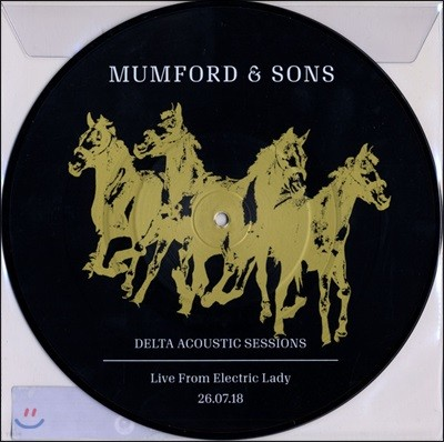 Mumford & Sons (멈포드 앤 선즈) - Delta Acoustic Sessions - Live from Electric Lady [10인치 픽쳐 디스크 LP]