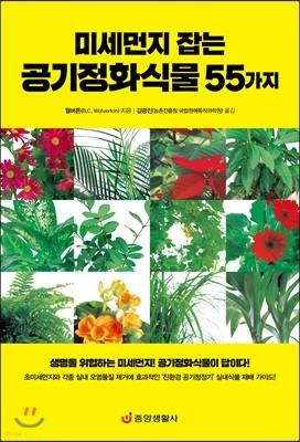 미세먼지 잡는 공기정화식물 55가지