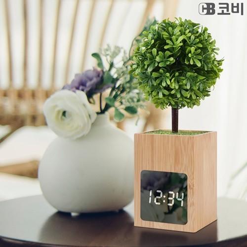 코비 집들이 선물 인테리어 소품 온도 표시 대나무 시계 BL50