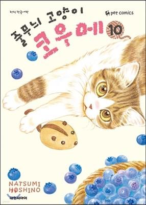 줄무늬 고양이 코우메 10