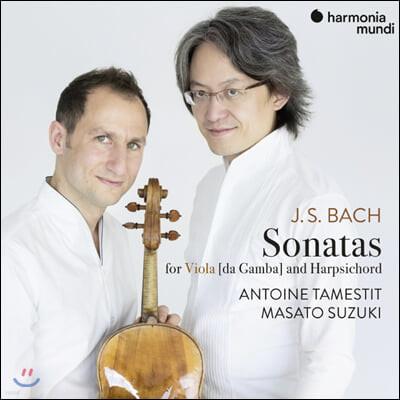 Antoine Tamestit / Masato Suzuki 바흐: 비올라 다 감바 소나타와 쳄발로를 위한 소나타 (Bach: Sonatas for Viola Da Gamba and Harpsichord)