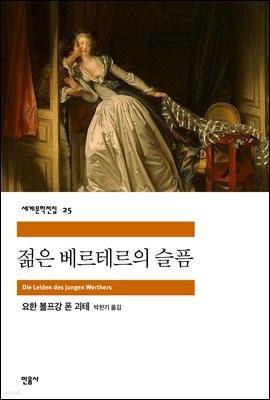 젊은 베르테르의 슬픔 - 세계문학전집 025