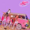레드벨벳 (Red Velvet) - 미니앨범 : The ReVe Festival Day 2 [Guide Book ver.]