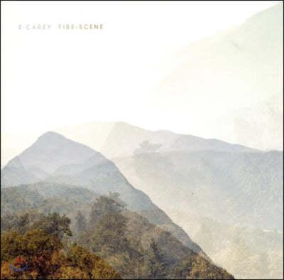 S. Carey (션 캐리) - Fire-Scene [7인치 Vinyl]