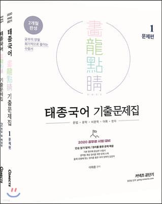 2020 태종국어 화룡점정 기출문제집