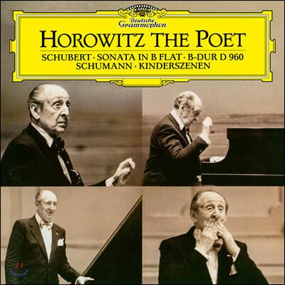 Vladimir Horowitz 슈만: 어린이 정경 / 슈베르트: 피아노 소나타 (Schubert: Piano Sonata D960 / Schumann: Kinderszenen) [LP]