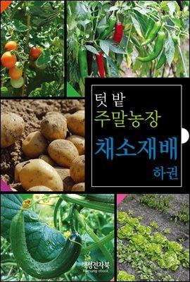 주말농장 채소재배 하권
