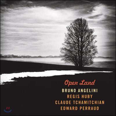 Bruno Angelini (브뤼노 앙젤리니) - Open Land